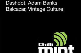 chilli mint music va004